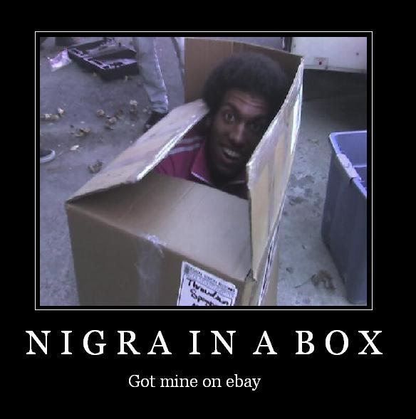 nigainabox